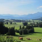 Blick von Landhotel Panorama Allgäu